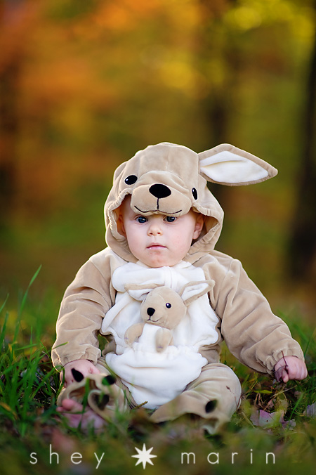 84f596336812 Frederick Maryland Baby Photographer Sc 1 St Shey Marin Photography. image  number 6 of kangaroo costume ...